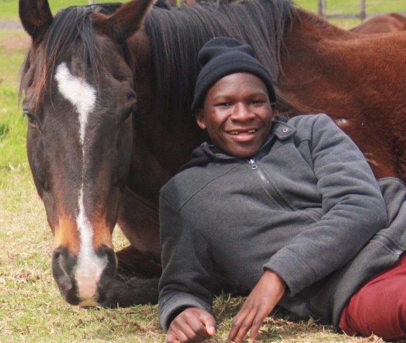 International Horse Art Exchange with South Africa